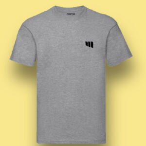 Grey Colour Printed Round T-shirts For Kids